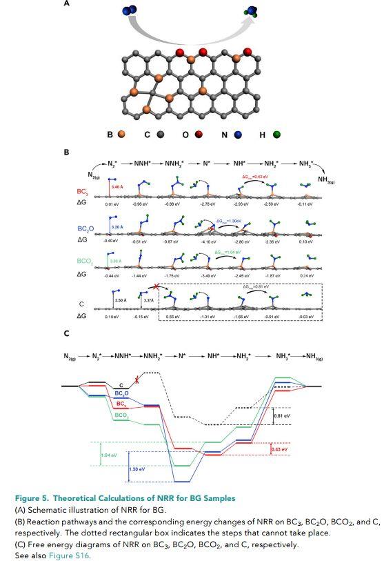 复旦郑耿锋&湖大马建民Joule:硼掺杂石墨烯不同硼结构强化NRR中N2吸附