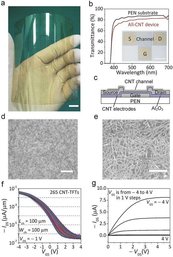 中科院Advanced Materials:米级单壁碳纳米管薄膜的规模化生产工艺及性能研究