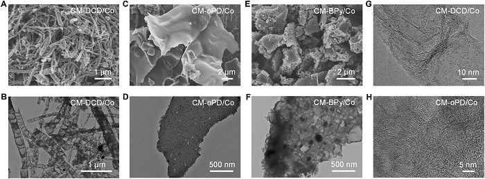 中国科大俞书宏&梁海伟Science Advances│分子层面可控宏量合成多孔掺杂碳纳米材料