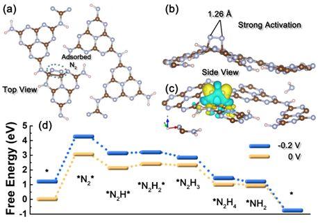 氮缺陷修饰的氮化碳:一种高效的非金属基固氮电催化剂