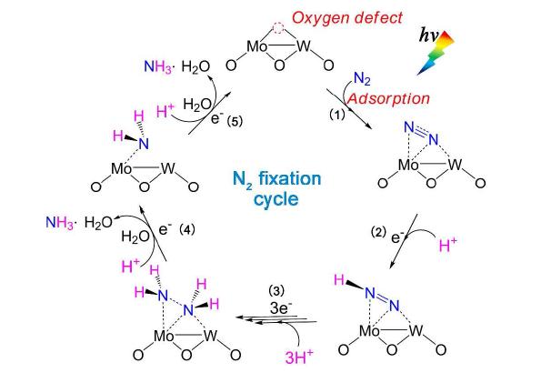 熊宇杰&高超&武晓君JACS:精修催化剂缺陷态,实现光催化合成氨的氮分子高效活化