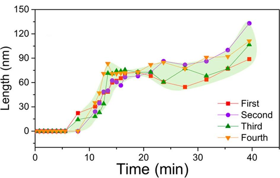 锂离子电池三元正极材料稳定性研究进展速报