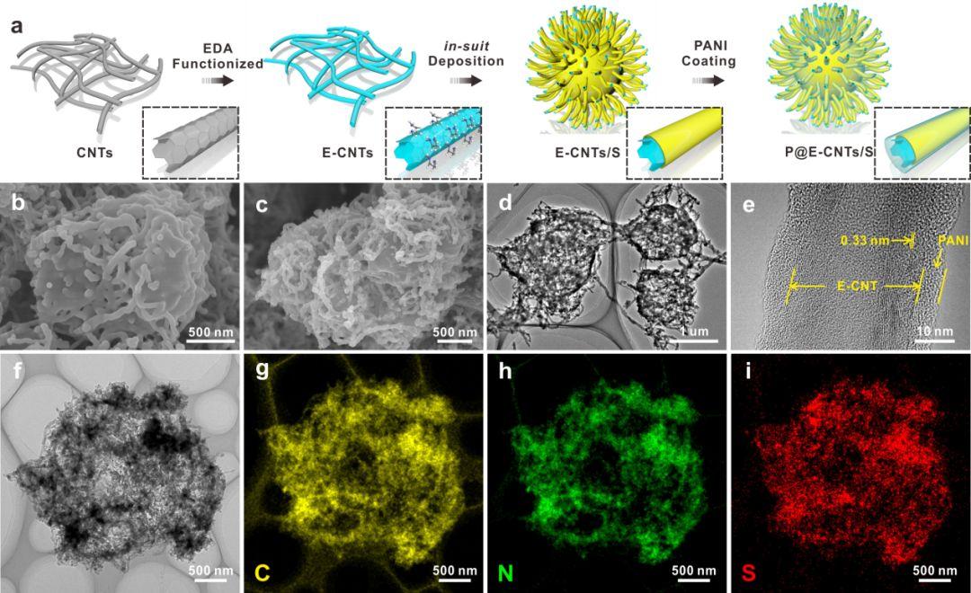 武汉理工李昱&苏宝连AEM:三维网状胺基化碳纳米管/硫复合材料用于锂-硫电池正极