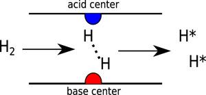 金属所怎么玩转催化计算?纳米碳材料催化剂表面官能团化学和催化计算大盘点