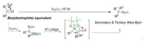 兰州化物所Angew. Chem. Int. Ed:羰基化合物转化制备烷基硼化合物