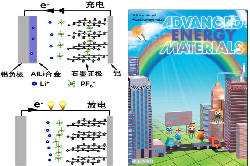 深圳先进院唐永炳团队AEM:新型双离子电池综述
