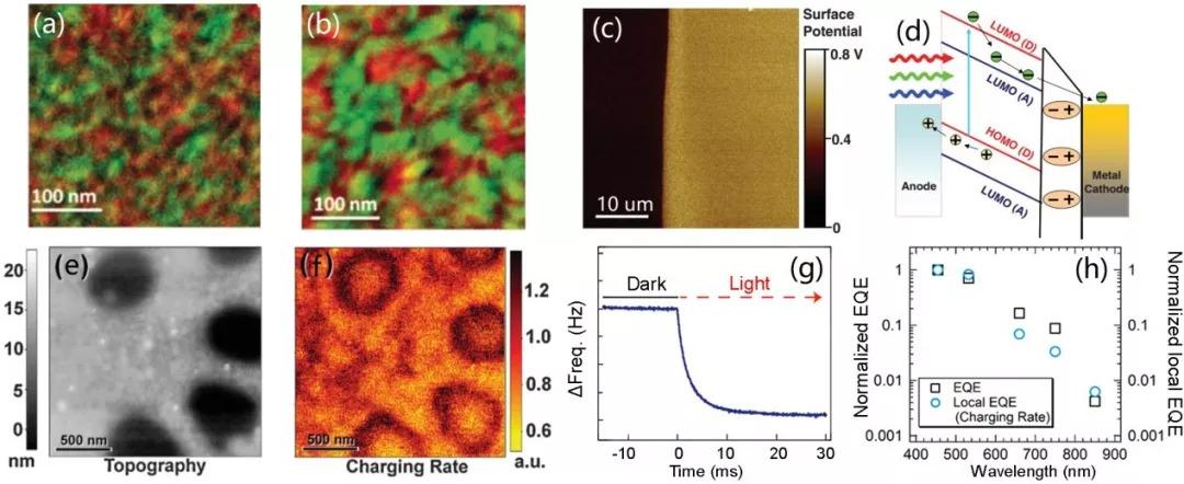 【综述】功能扫描力显微镜在能源纳米器件表征中的应用