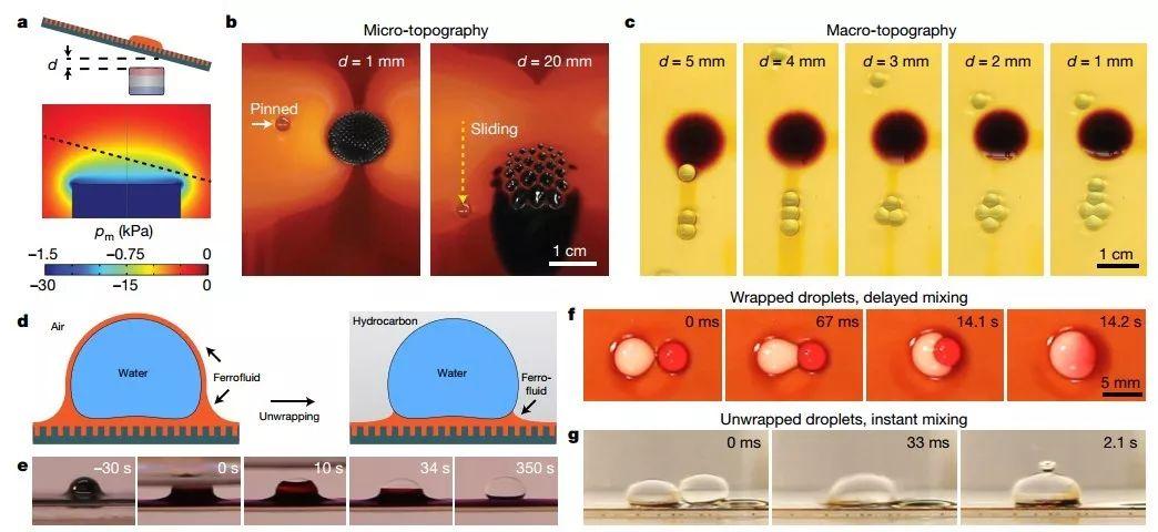哈佛大学Nature: 磁流体显神通--多尺度,多功能,可重构表面材料