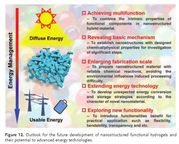 纳米结构化功能水凝胶:一类新兴的先进能源材料体系