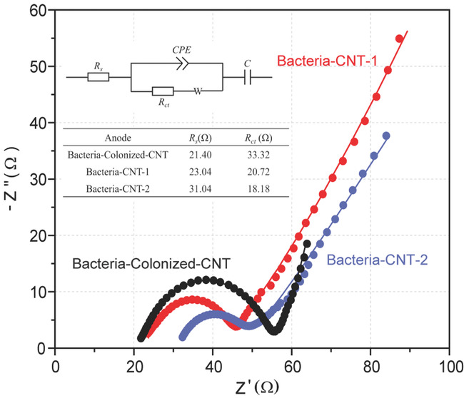 Small Methods 交织之美:细菌/碳纳米管三维交互薄膜结构微生物燃料电池阳极