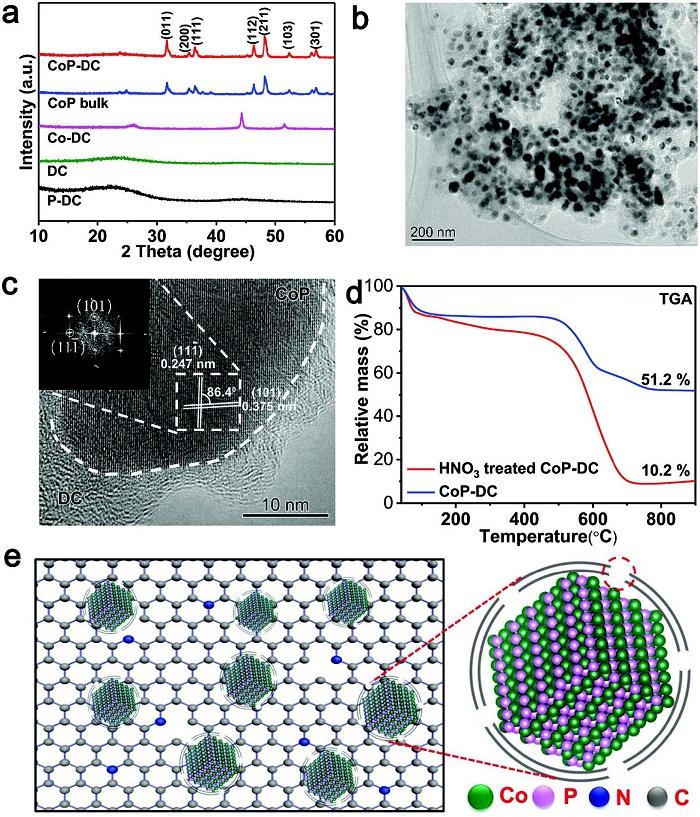 中科大宋礼团队AEM丨CoP-DC双功能氧气催化剂:来自界面电荷极化的催化激励作用