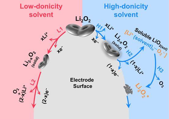 挑战硬骨头!卢怡君教授Joule揭示锂-氧电池溶剂可控析氧反应机理