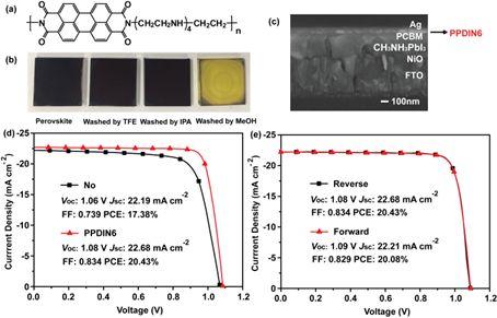 填充因子超83%!杨世河教授课题组的钙钛矿太阳能电池是这样调控的