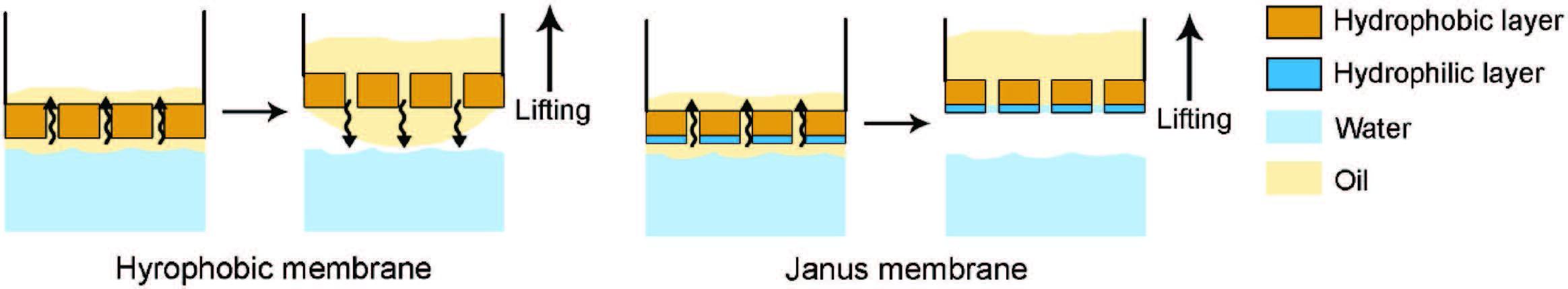 学术干货 | Janus膜及其在膜过程中的应用简介