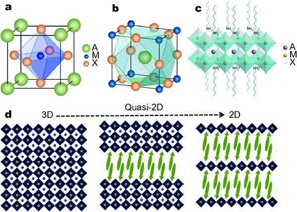 【综述】二维有机-无机杂化钙钛矿: 从材料性能到器件应用