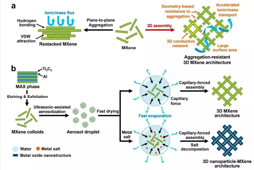具有抗团聚性能的3D MXene基结构作为高效的双功能电催化水分解催化剂