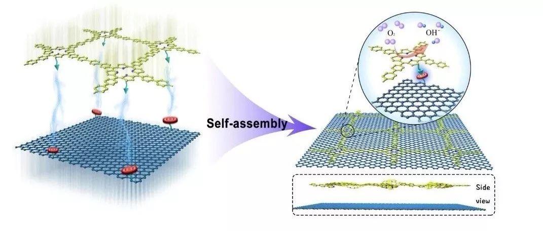 北化向中华&北德克萨斯大学夏振海|Angew: 非碳化共价有机聚合物用于氧还原