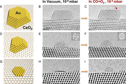 清华大学李隽等PNAS:一氧化碳氧化反应中金纳米颗粒动态作用机理揭秘