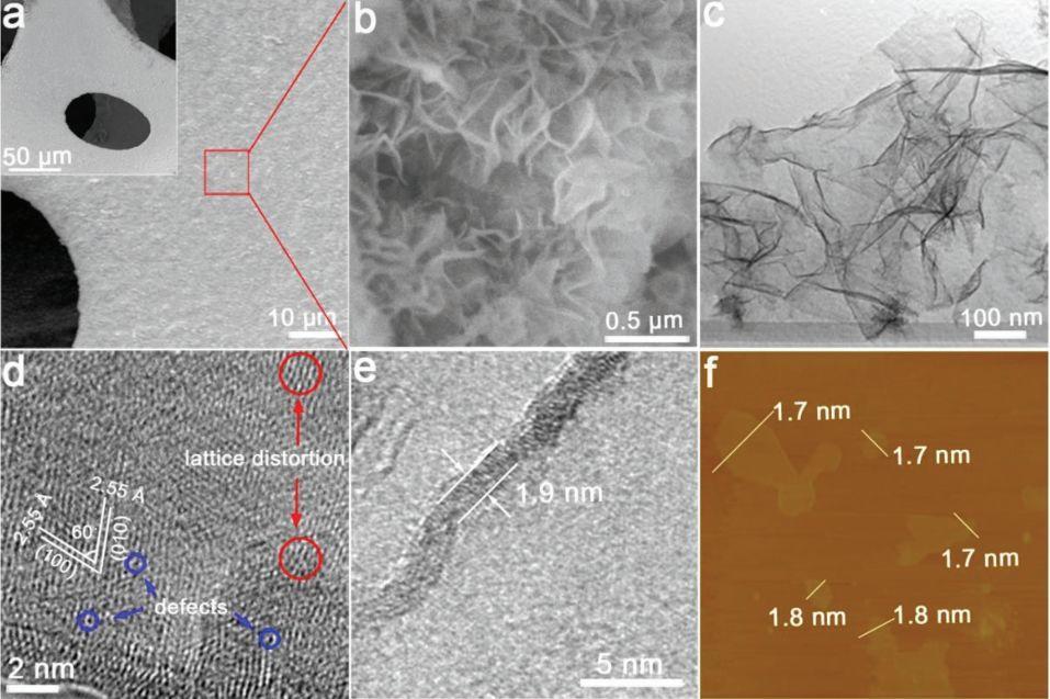 活化新策略:金属阳离子空位诱导双功能性实现水全解