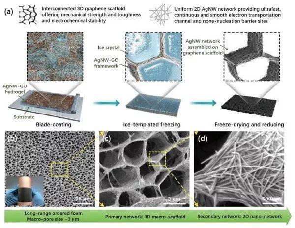 AM金属锂复合负极:银纳米线-石墨烯骨架实现10 C大倍率稳定循环
