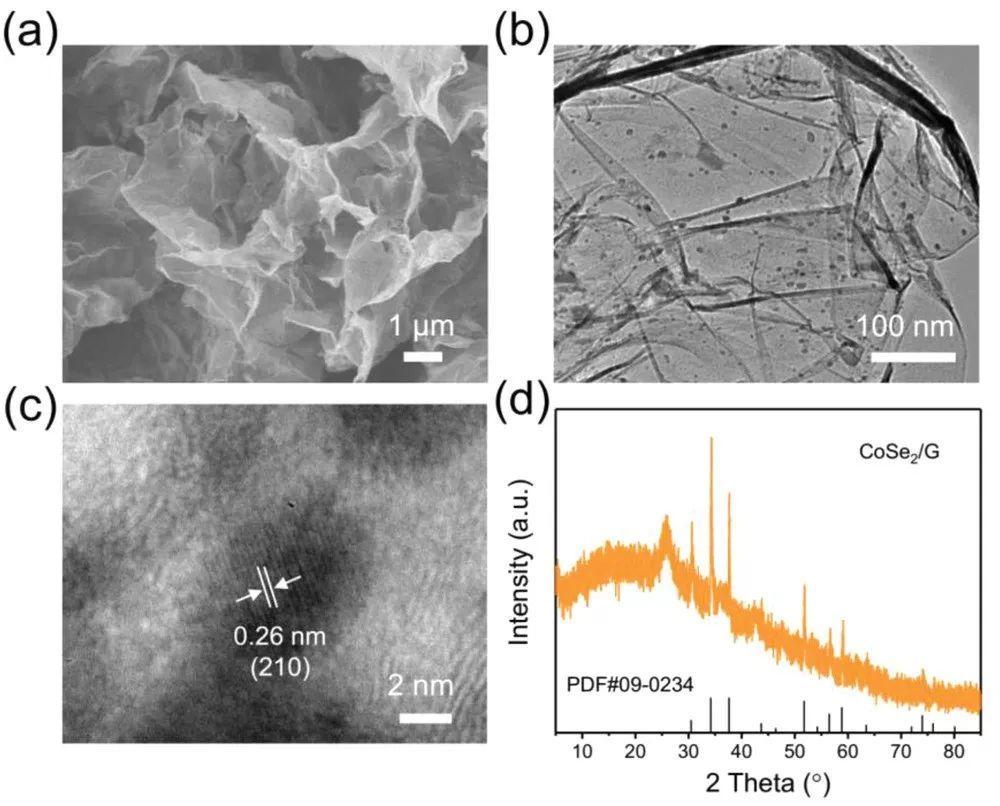 硫化锂均匀形核:兼具导电和催化性的三相界面助力高倍率锂硫电池