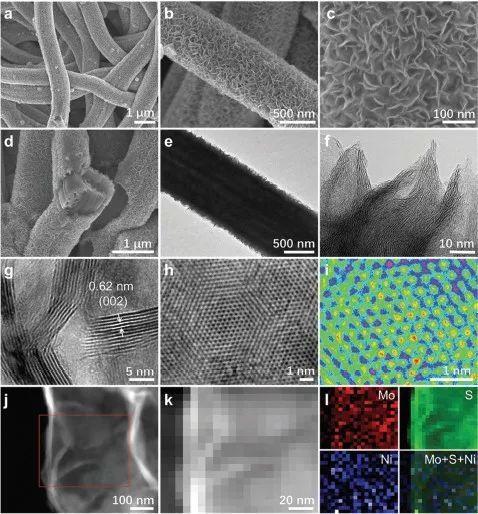 AFM: 表面修饰层状MoS2纳米片单原子催化剂用于高效析氢