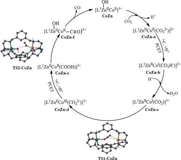 钟地长&鲁统部:双核金属协同催化促进光化学CO2转化为CO