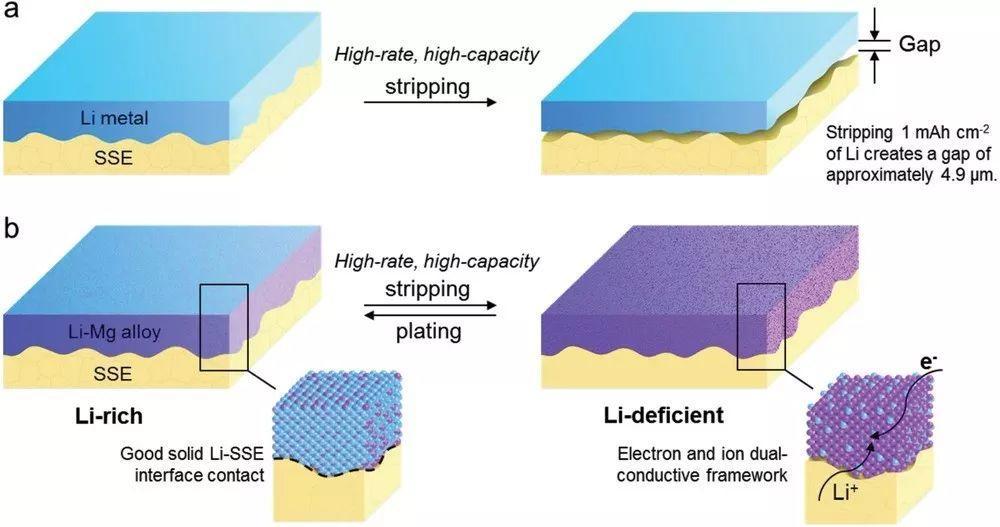 胡良兵教授AM:电子/离子双导体合金骨架用于高电流密度和高容量全固态锂金属电池