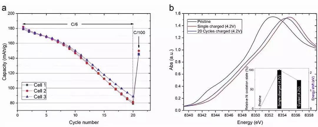 """""""恶性循环"""":富镍层状正极在固态聚合物电池中的化学-机械相互作用"""