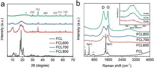 AEM高性能超电材料:原位掺杂N、Fe的富勒烯基3D交联分层碳复合材料