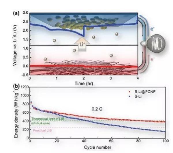 香港科技大学AEM:碳表面特性对锂沉积行为的影响