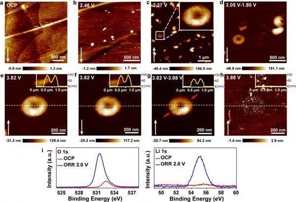 JACS:揭秘可溶性催化剂表面效应对Li-O2电池ORR/OER的影响