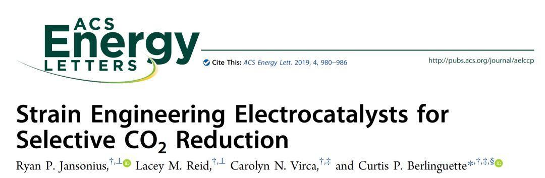 ACS Energy Lett.:晶格应变工程调控电催化CO2还原的选择性