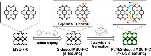 碳平面引入含S官能团优化FeN4位点的ORR活性
