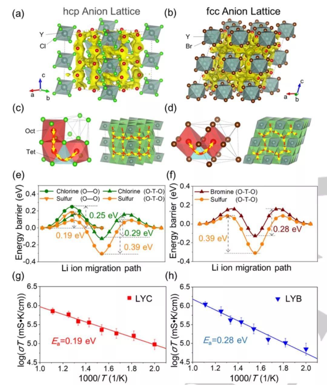 北大&马里兰大学Angew:氯化物和溴化物超离子导体助力高性能固态锂电池