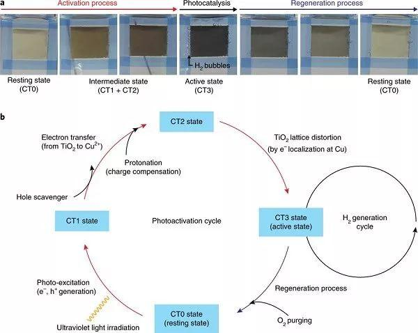 Nature Materials:TiO2负载的单原子Cu催化剂在光催化析氢反应中的可逆协同光活化机制