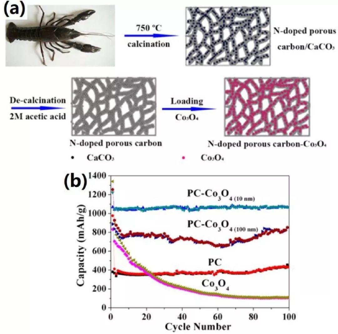 中科大俞汉青EES综述:生物碳基材料在能量储存与转换中的应用