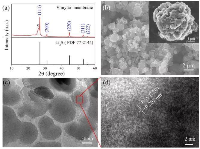 厦门大学Nano Letters:超高负载量的全固态锂硫电池