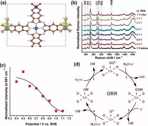 Angew. Chem. : 二维共轭的酞菁MOFs用作高效ORR电催化剂