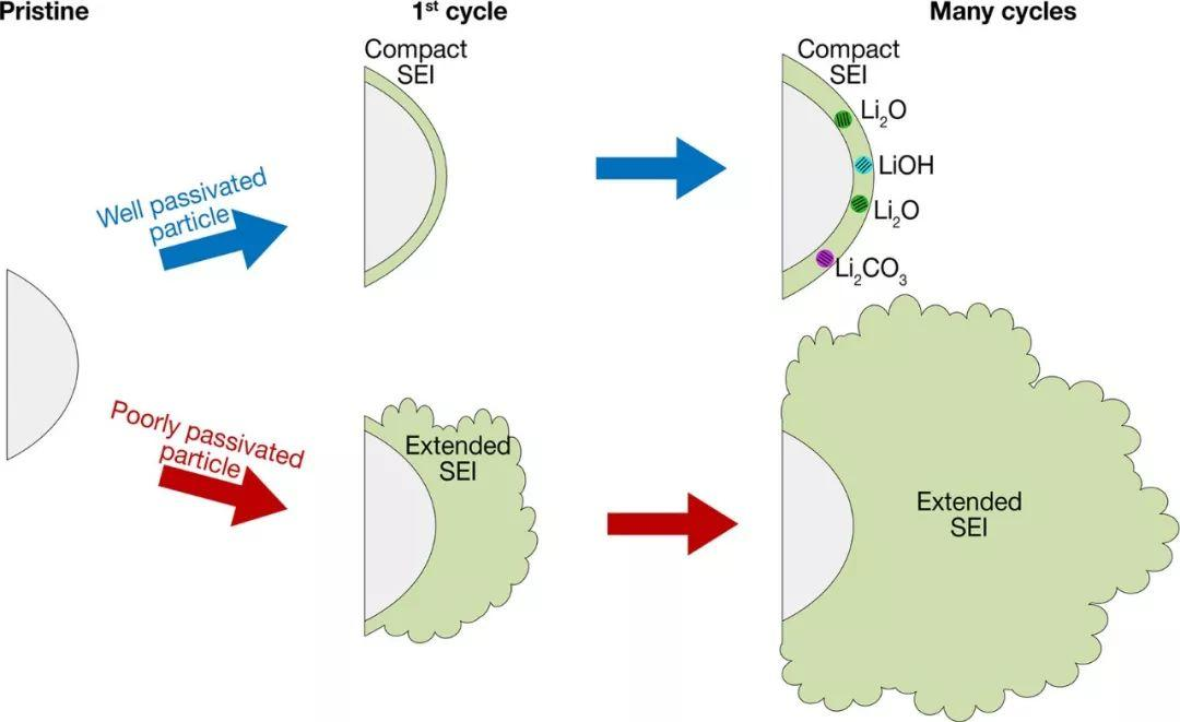 低温电子显微镜观察碳质负极上固体电解质界面的演变