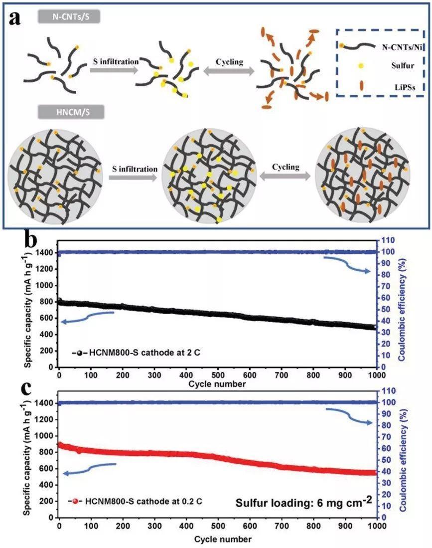 简单喷雾干燥-热解制备高氮掺杂含量的碳纳米管微球用于高性能锂存储
