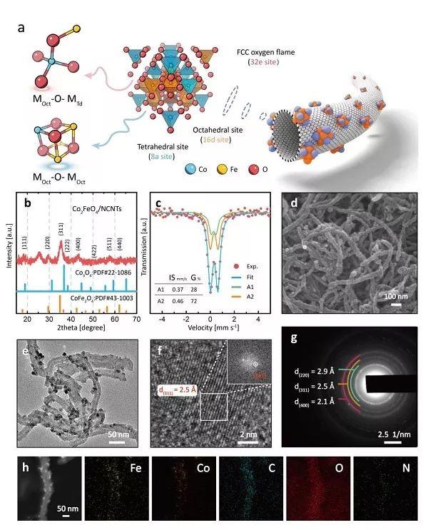 纽卡斯尔大学&广州大学Angew: 氧化还原惰性的Fe3+离子对Co-Fe尖晶石氧化物的OER/ORR活性有何影响?