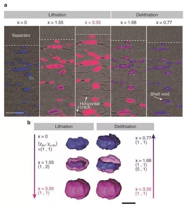 丰田汽车&保罗谢尔研究所AEM: 原位察看全固态电池内部的形貌演变和问题