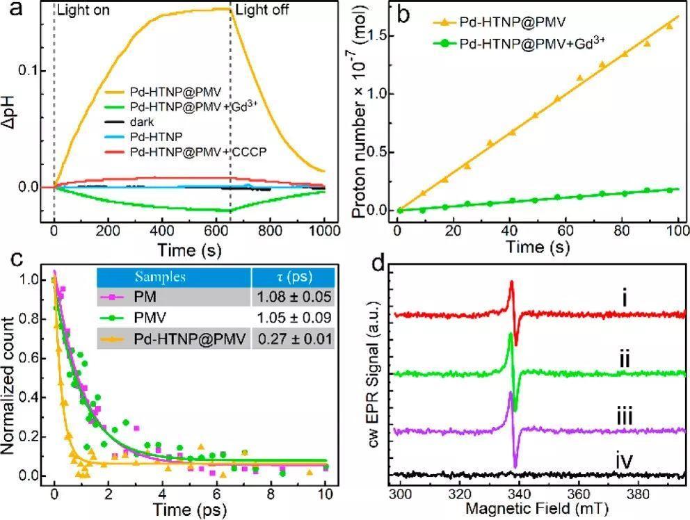 JACS:构筑生物-无机复合催化剂,加快可见光催化CO2还原