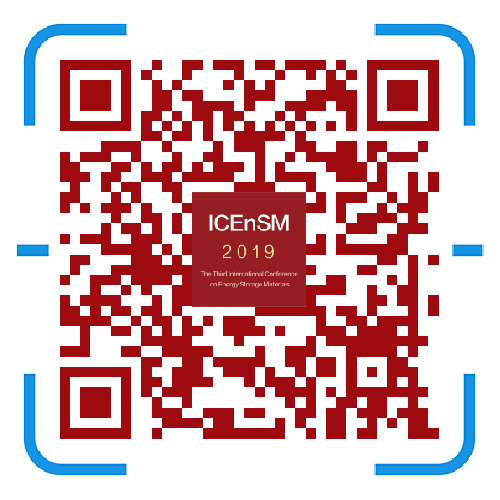 2019第三届储能材料国际研讨会 大会报告人-孙世刚院士 | 中国 · 深圳