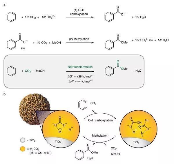 Nature Chemistry:新的封闭循环!用醇和CO2酯化芳香烃的最新进展