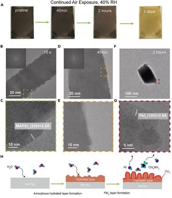 Joule:冷冻电镜研究有机-无机卤化物钙钛矿分解机制