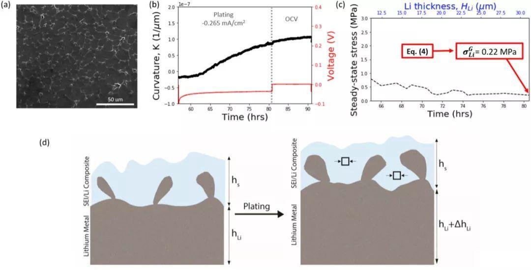 EnSM:锂金属电极中的应力演变
