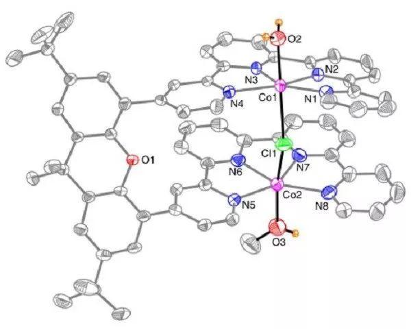 Nature Catalysis:CO or HCOO-?可见光催化CO2还原产物的选择性调控
