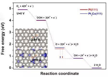 如何确定吸附物种和催化机理?SHINERS原位光谱来帮忙!